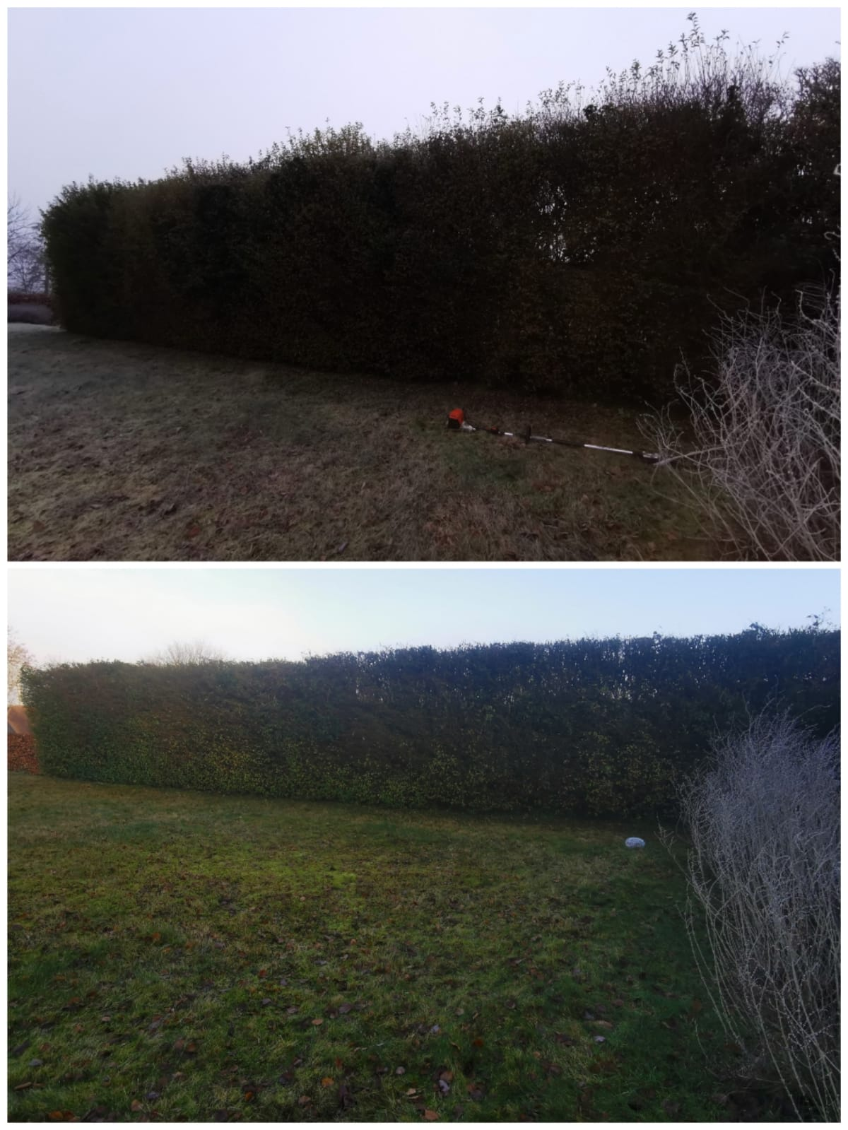 Reduction on the pivet hedge